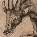 thumbnail of a graphorn