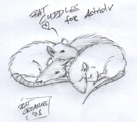 rat cuddles for astridv